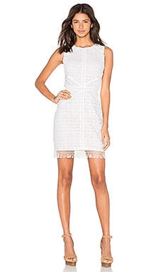 Greylin Mina Fringe Lace Dress in White
