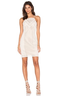 Greylin Lua Lace Halter Dress in Creme