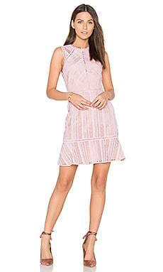 Kimmy Lace Dress in Chalk Rose