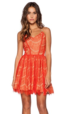 Greylin June Scallop Lace Dress in Mandarine