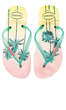 Slim Paisage Sandal Havaianas $24