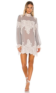 Queen 4 A Day Dress HAH $298 NEW ARRIVAL