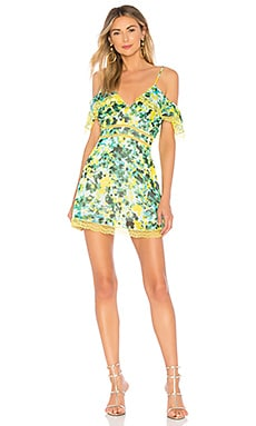 773b08af20d5 x REVOLVE Devi Dress House of Harlow 1960  70 ...