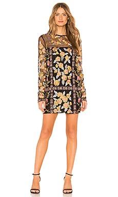 x REVOLVE Paula Dress House of Harlow 1960 $80