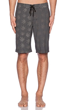 Huf Reflective Plantlife Boardshort in Black