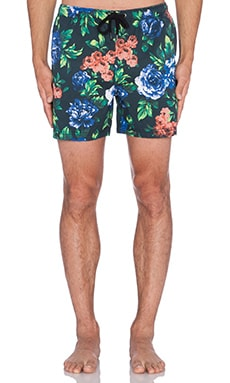 Insight Blue Note Beach Short in Blue Note Floral