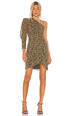 Morello Dress IRO $495 NEW ARRIVAL