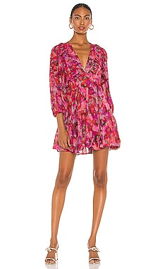 Gaiety Dress IRO $600