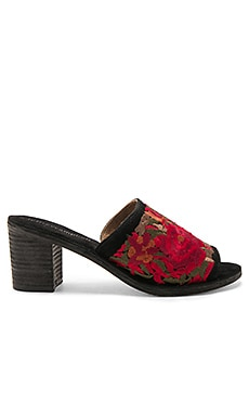 Pushpita Heel in Black Suede Red Combo