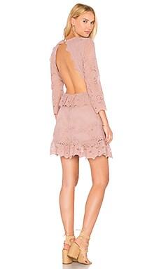 Купить Мини платье magdalena valley - Jen's Pirate Booty фиолетового цвета
