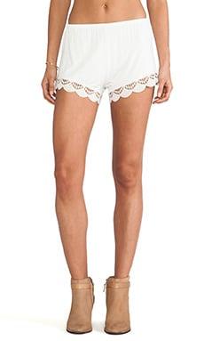Peek-A-Boo Cheeky Shorts