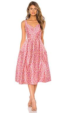 Fit And Flare Dress JILL JILL STUART $468