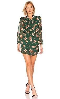 ドレス J.O.A. $54