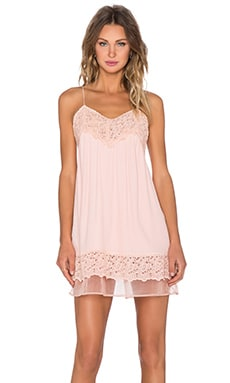 J.O.A. Lace Shift Dress in Blush Pink
