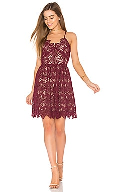 Fit And Flare Lace Dress in Burgundy