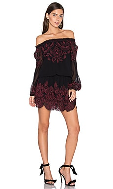 Cassopia Dress in Caviar & Cabernet
