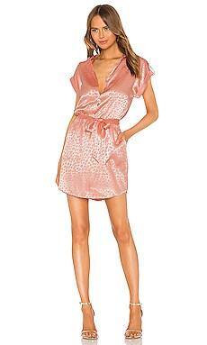 Daran Dress Joie $298