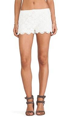 Maylie Crocheted Shorts
