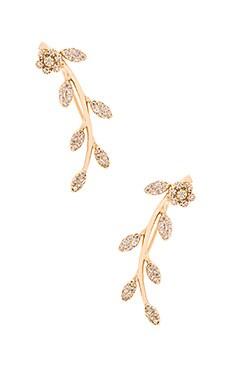 joolz by Martha Calvo Pave Leaf Ear Crawler in Gold