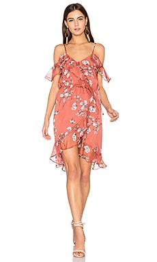 Oasis Floral Mini Dress
