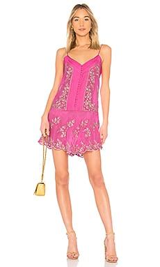 Платье-комбинация - juliet dunn