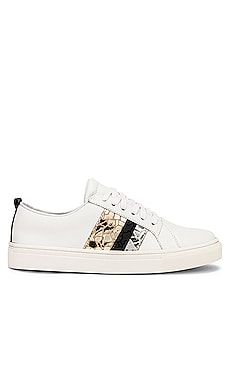 Bristol Lace Up Sneaker With Side Stripes Kaanas $139