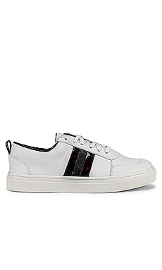 Zurich Lace Up With Contrast Stripe Sneaker Kaanas $78
