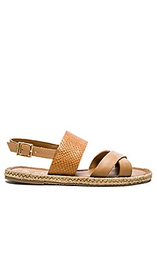 Kaanas Cayman Sandal in Honey