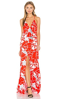 Karina Grimaldi Draco Print Maxi Dress in Italia