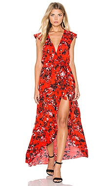 Karina Grimaldi Tamara Print Maxi Dress in Fantasia