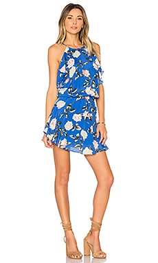 Lulu Print Mini Dress in Blue Rose