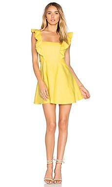 Ulises Mini Dress
