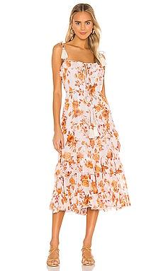 Lori Print Dress Karina Grimaldi $350 BEST SELLER