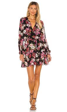 Abigal Print Mini Dress Karina Grimaldi $262 NEW