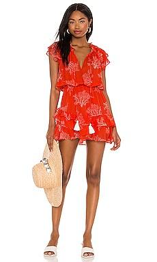 Lucia Print Mini Dress Karina Grimaldi $284