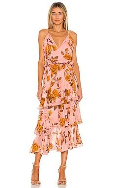 Cassandra Print Maxi Dress Karina Grimaldi $350