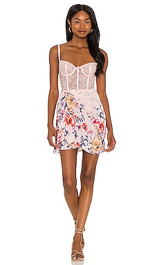Man Whisperer Dress Katie May $325 NEW