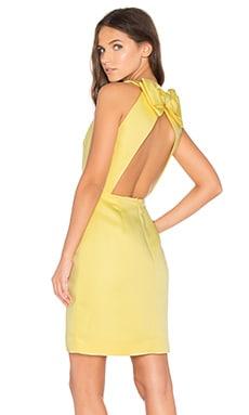 Bow Back Cupcake Dress