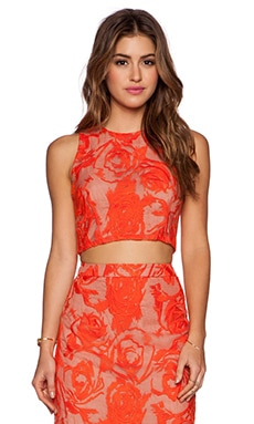 krisa Crop Tank in Cannes Lace Print