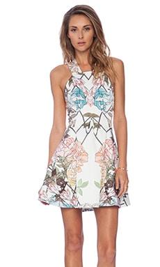 keepsake Hurricaine Dress in Ivory Diamond Floral
