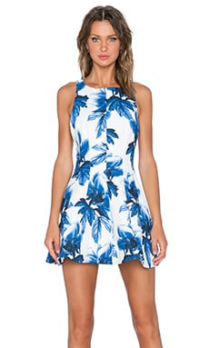 keepsake Straight Talker Dress in Wedgewood Floral