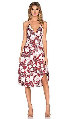 keepsake Heart Strong Dress in Dark Wallpaper Floral