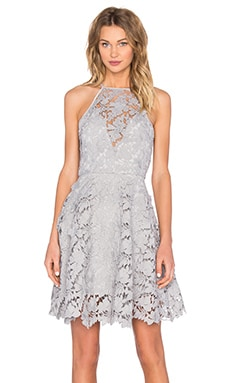Acoustic Lace Dress in Pale Grey