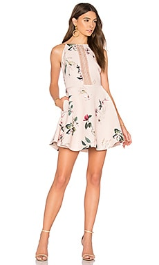 Do It Right Mini Dress in Light Garden Floral