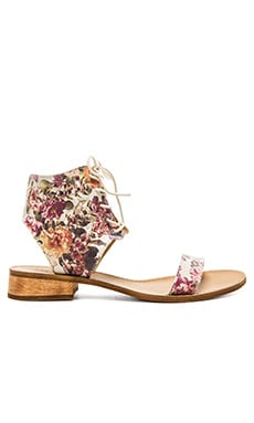 Latigo Rose Sandal in Floral