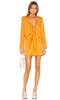 The Camille Mini Dress L'Academie $228 NEW ARRIVAL