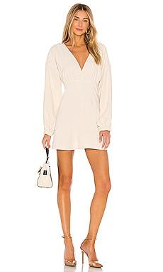 The Carola Mini Dress L'Academie $81
