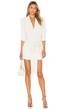 The Rosemarie Mini Dress L'Academie $238