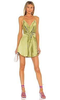 Terina Dress L'Academie $198 BEST SELLER