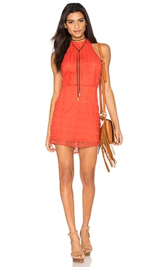 Line & Dot Promenade Halter Dress in Tangerine